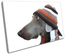 Dog in Hat Animals - 13-0898(00B)-SG32-LO